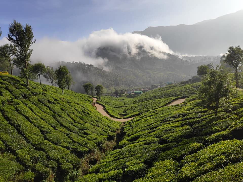 Photo of Kodaikanal, Tamil Nadu, India by Sheetal Vibhuti escapingsoul.in