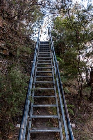 Photos of Gordon Falls Lookout, Blue Mountains National Park, New South Wales, Australia 3/3 by Shona Guthrie