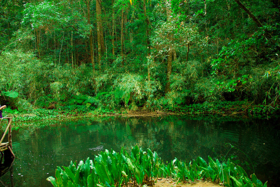 Photos of The Secret Tiny Little Lake Near Bangalore You Didn't Know About 2/4 by Kitty Iyer
