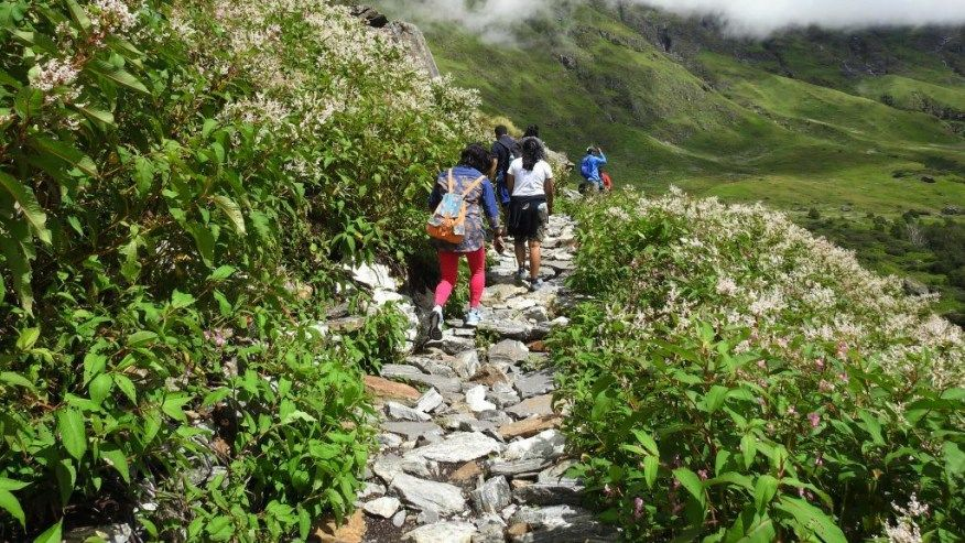 Photo of 5 Easy Treks in India for Trekking Lover 4/5 by Rohan Rawat
