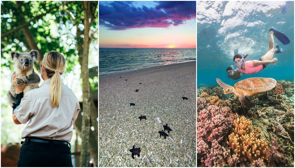 8 Magical Things That You Can Do In Queensland