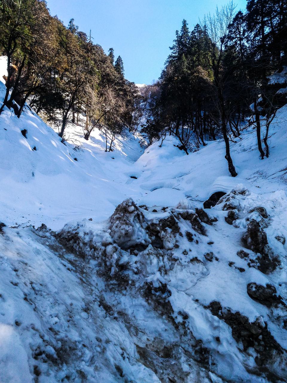 Photo of near jalori pass by Monidipa Bose