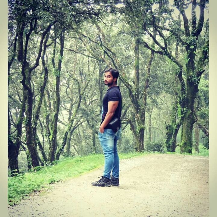 Photos of In mid of the woods 1/1 by Anurag Thakur