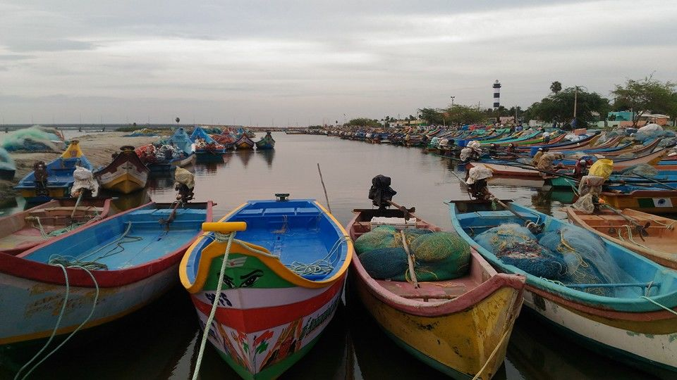 Photos of Pulicat- The Fisherman's Cove 1/1 by Arpita Mukherjee