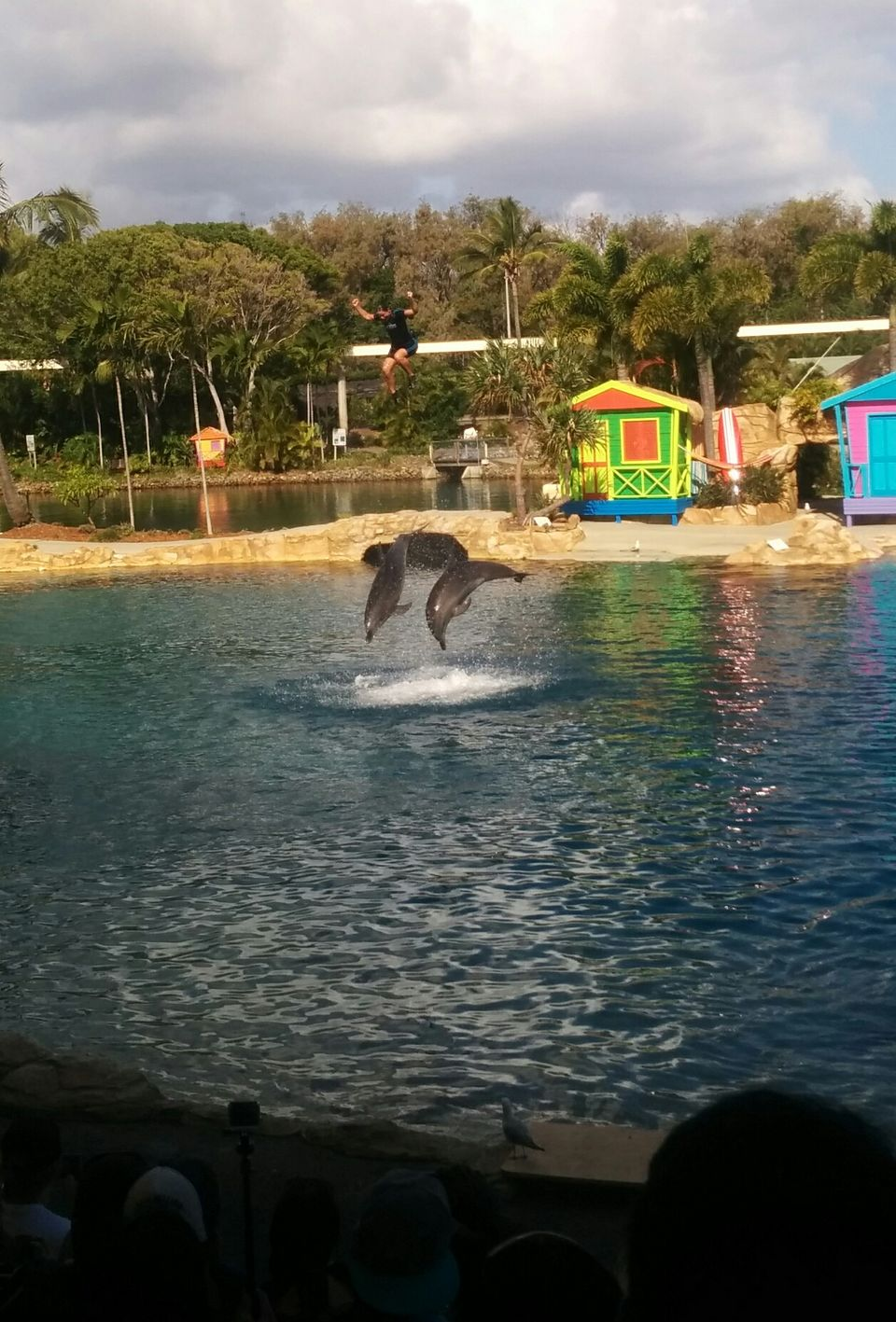 Photo of Sea World, Gold Coast, Queensland, Australia by Nikita Mathur