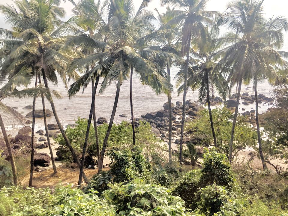 Photo of Goa to Bangalore : Five reasons to ditch your flight, and board a train! 3/9 by Nikita Mathur