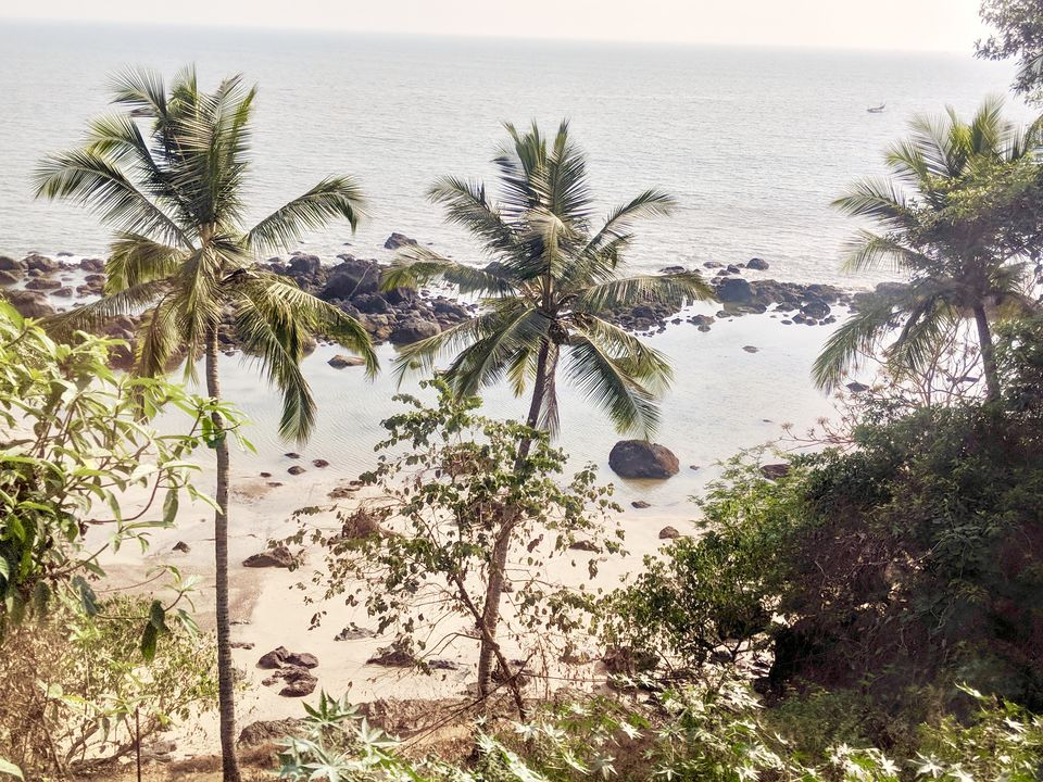 Photo of Goa to Bangalore : Five reasons to ditch your flight, and board a train! 4/9 by Nikita Mathur
