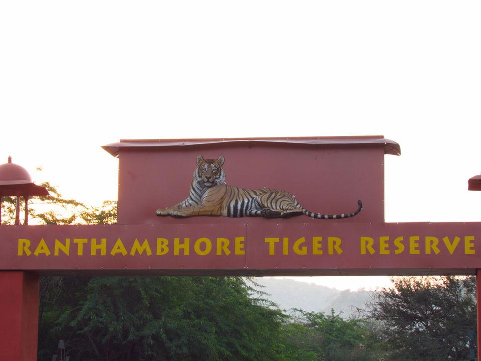 Photos of Ranthambore National Park, Prempura, Rajasthan, India 1/4 by Prahlad Raj