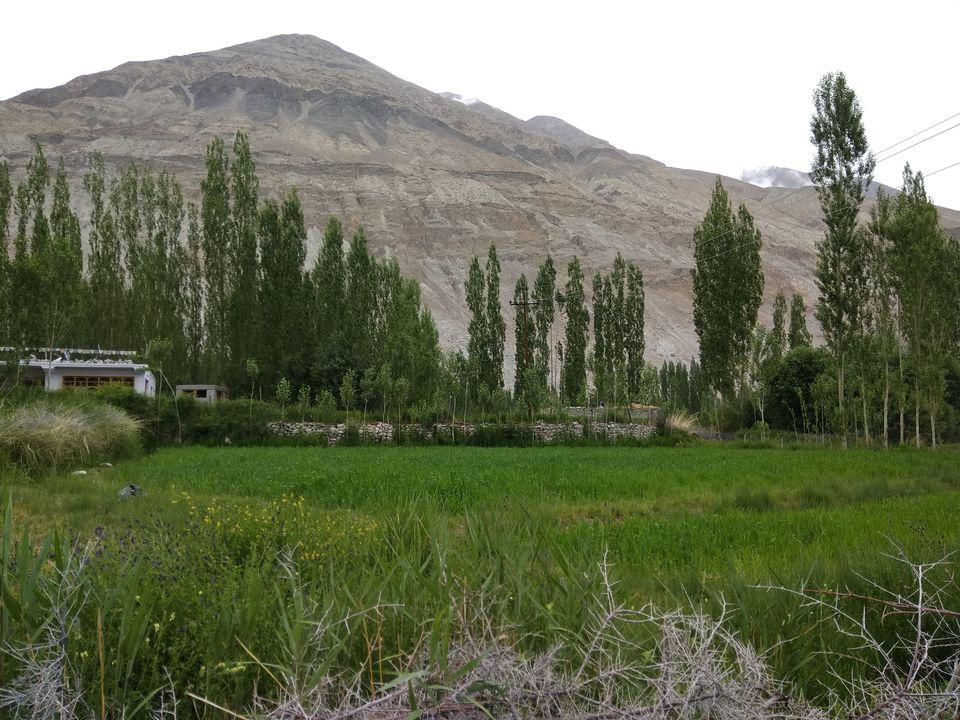 Photos of 17 Days Ladakh Roadtrip from Mumbai 42/74 by Prahlad Raj