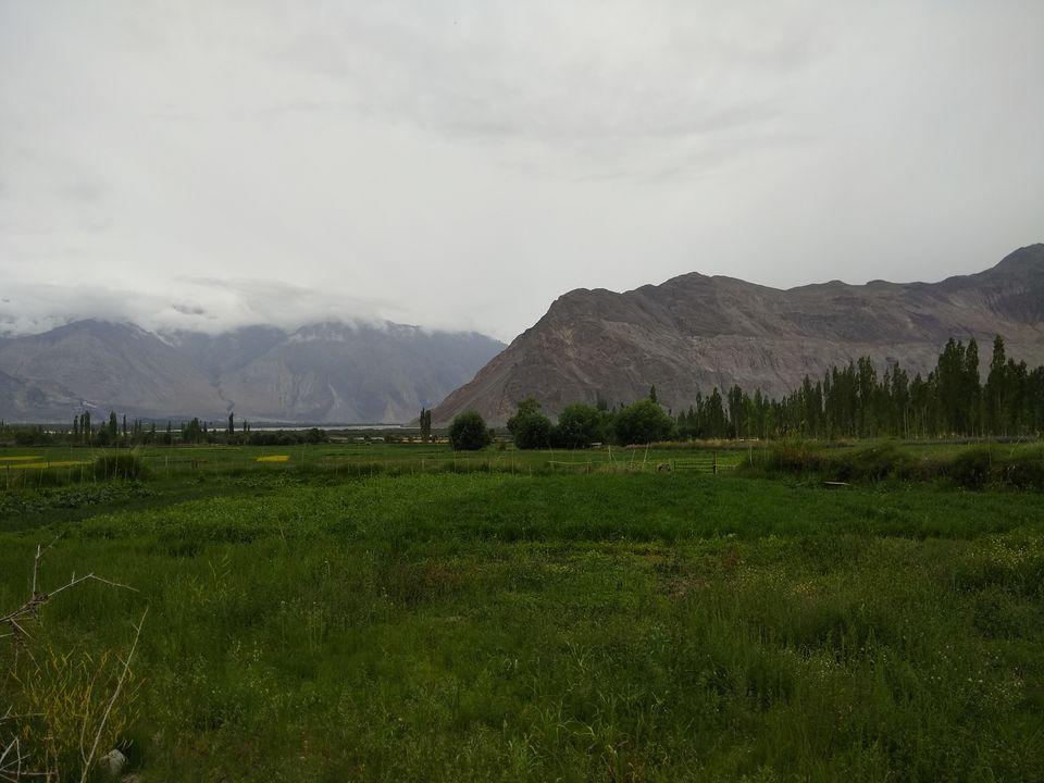 Photos of 17 Days Ladakh Roadtrip from Mumbai 43/74 by Prahlad Raj