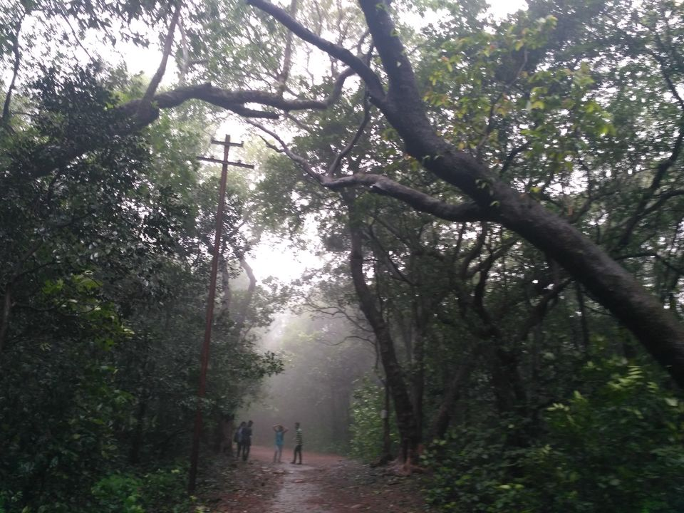 Photos of Matheran - Monsoon Hiking in the Jungle 8/11 by Prahlad Raj