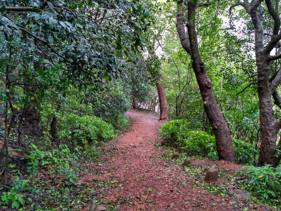 Photos of Matheran - Monsoon Hiking in the Jungle 7/11 by Prahlad Raj