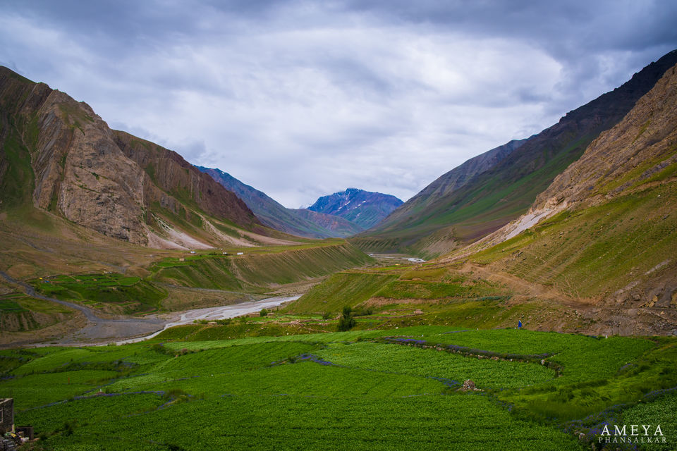 Photo of Pin Valley National Park, Valley, Himachal Pradesh, India by Leena S.