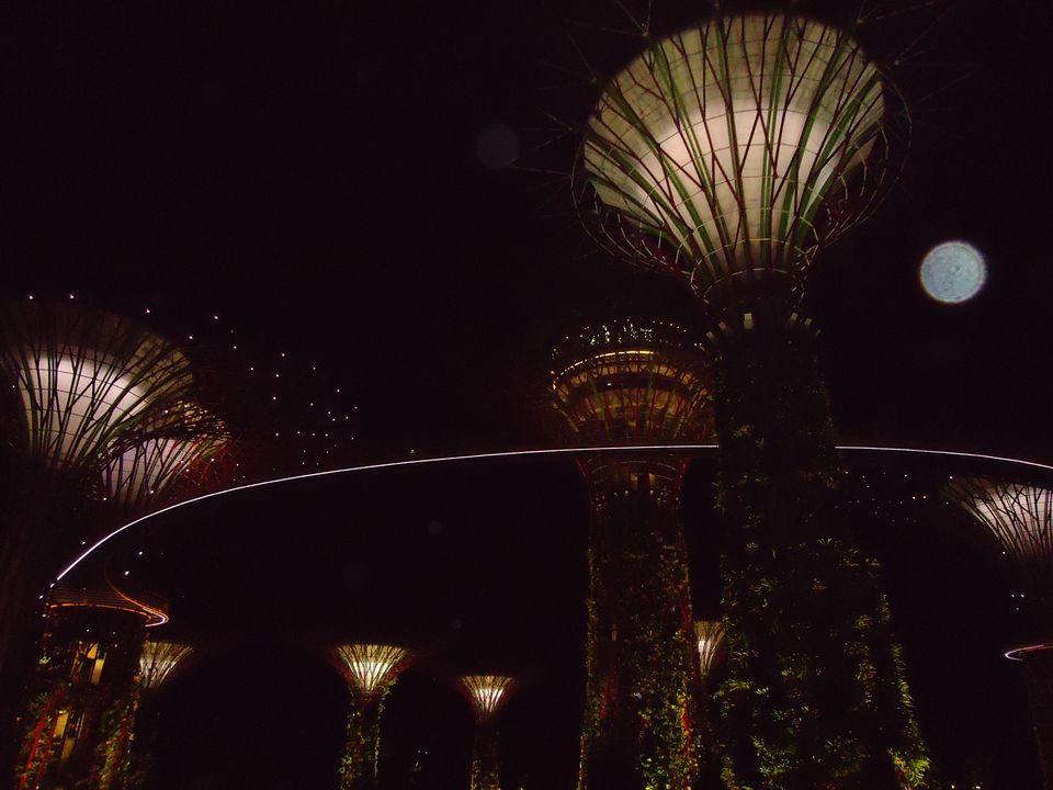 Photo of From Island Hopping To Jungle Trekking To City Wayfaring: My Krabi And Singapore In 7 Days 27/29 by Ipshita