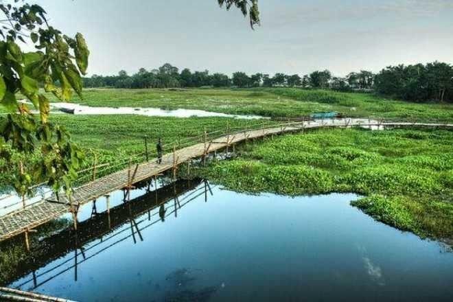 Image result for Majuli, Assam
