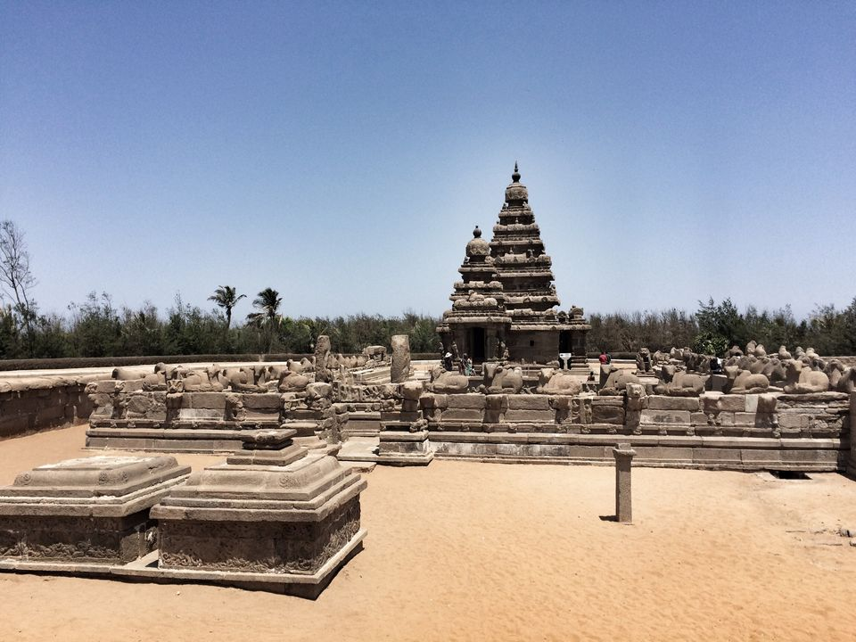 Photos of Here's Why Mahabalipuram (En route to Pondicherry) is Worth a Visit 1/1 by Mahima Agarwal