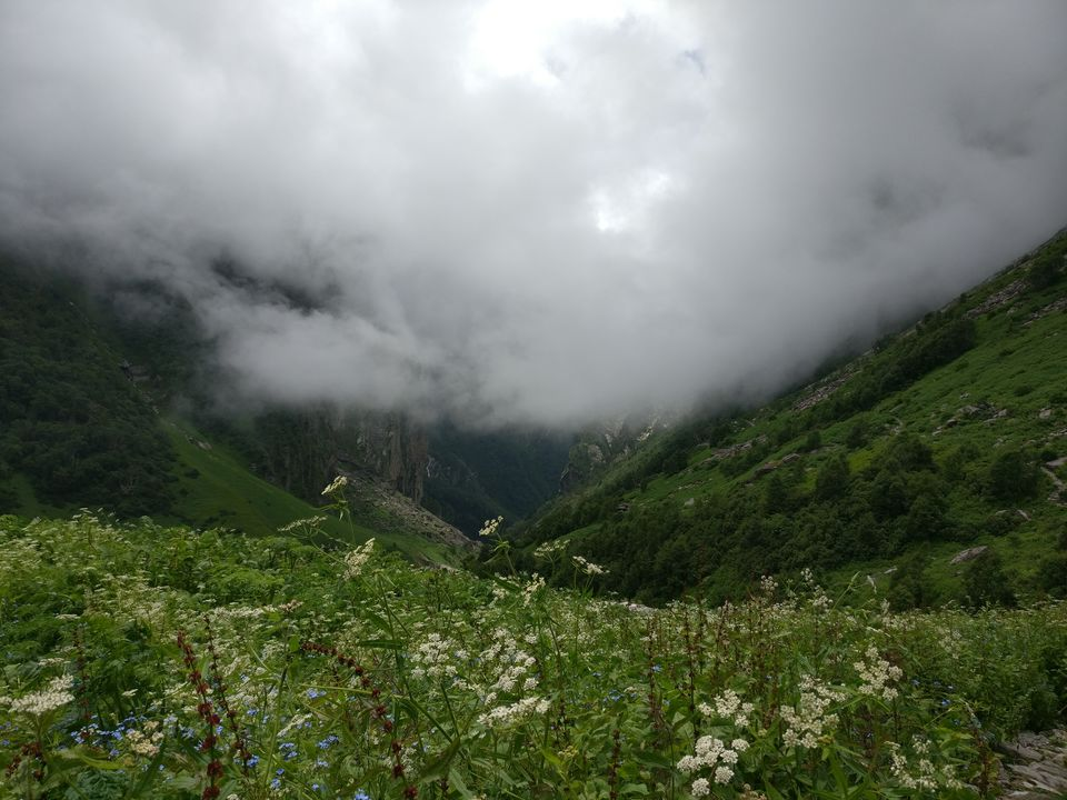 Photos of A Glimpse of Heaven here ! 1/1 by Satyen