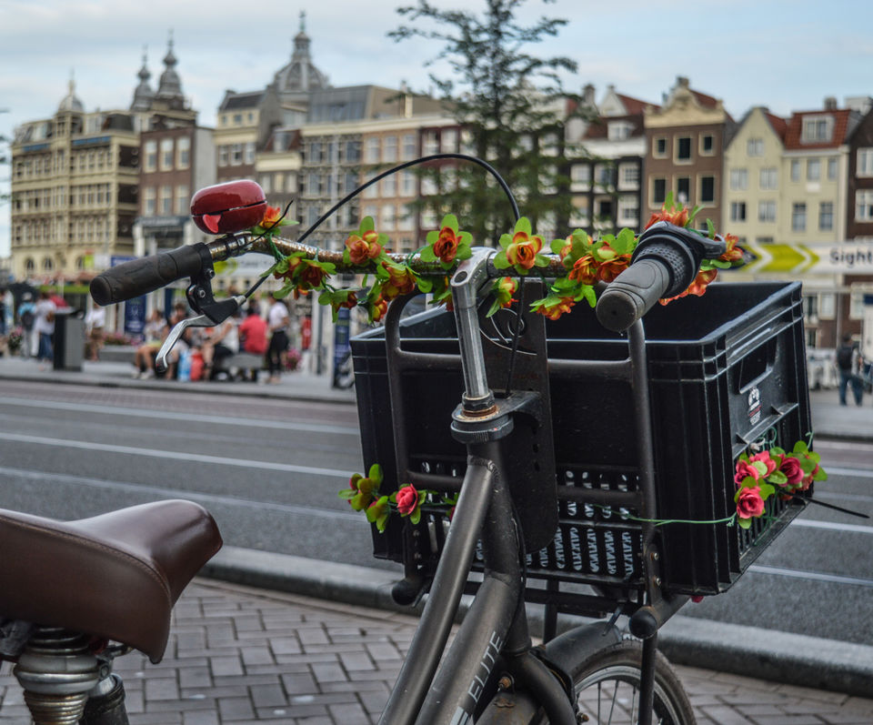 #TripotoTakeMeToDeoriatal A hobby photographer's perspective of The Netherlands (Holland)