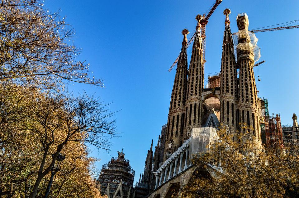 Visit jardin botanico de barcelona in barcelona for Barcelona jardin botanico