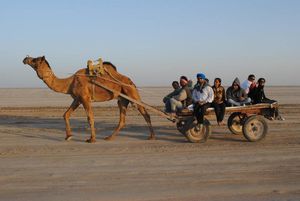 Dinosaurs, White Deserts And Ancient Towns Make Gujarat The Perfect Winter Vacation Spot For Kids