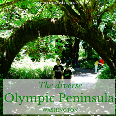 The Diverse Olympic Peninsula, Washington