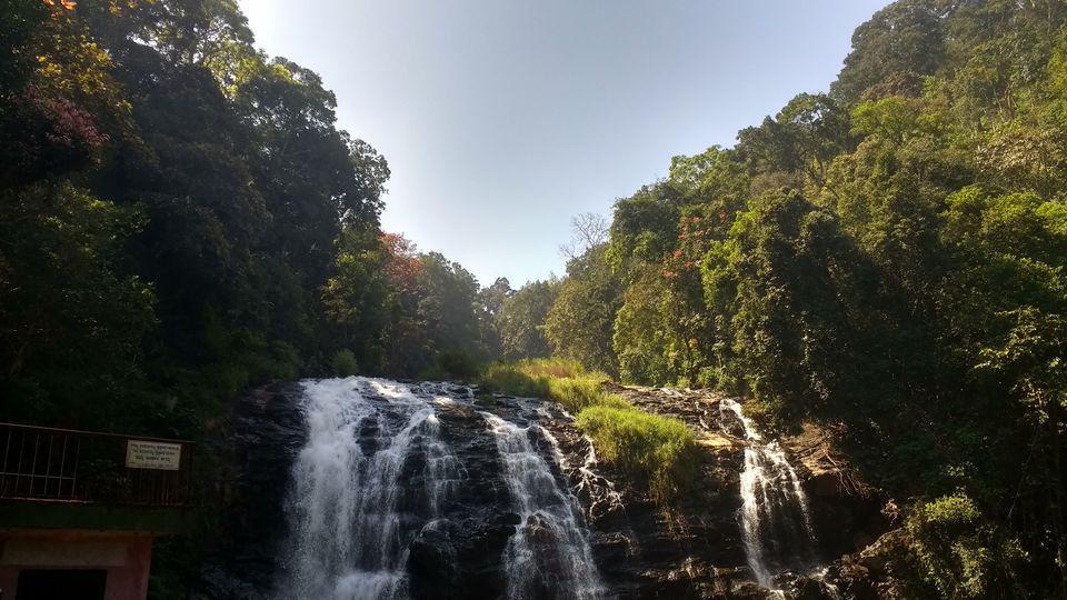 Photos of Abbey Falls 1/1 by rysha hamza