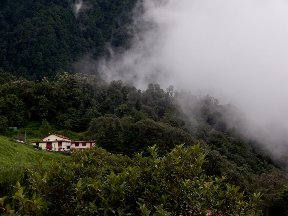 Photos of Pangot - View from The Great Barbret lodge 1/1 by Raman Oberoi