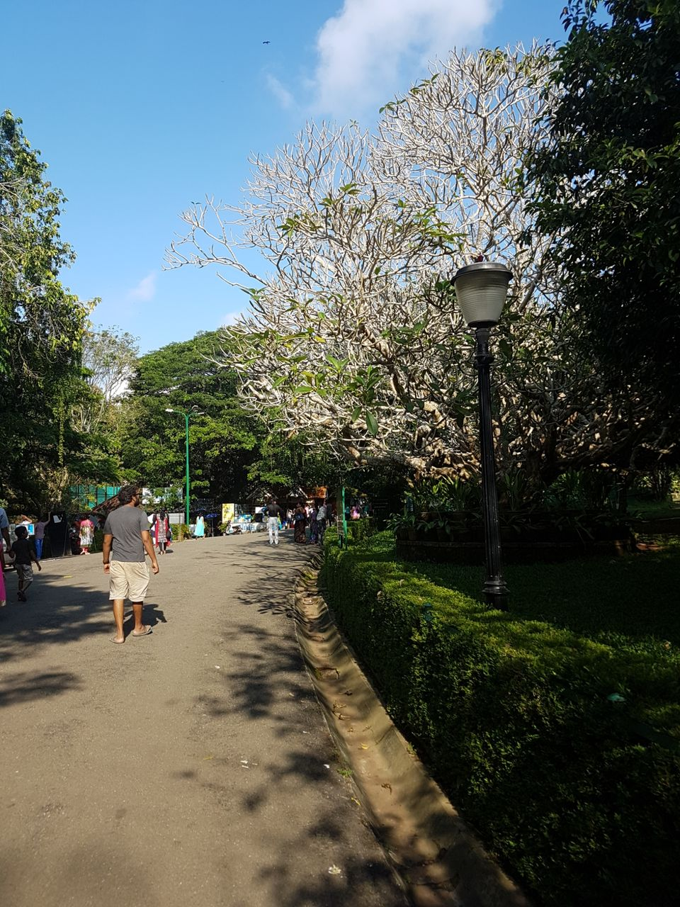 Photo of Napier Museum, Thiruvananthapuram, Kerala, India by The Fervid Traveller