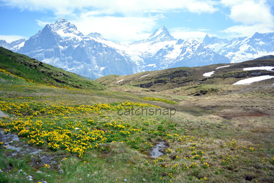 Photos of Switzerland 1/1 by Sonam Singh