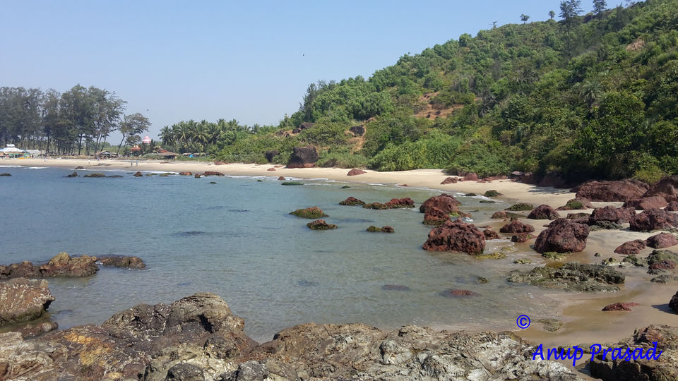 Photos of Morjim, Goa, India 1/1 by Madhuree