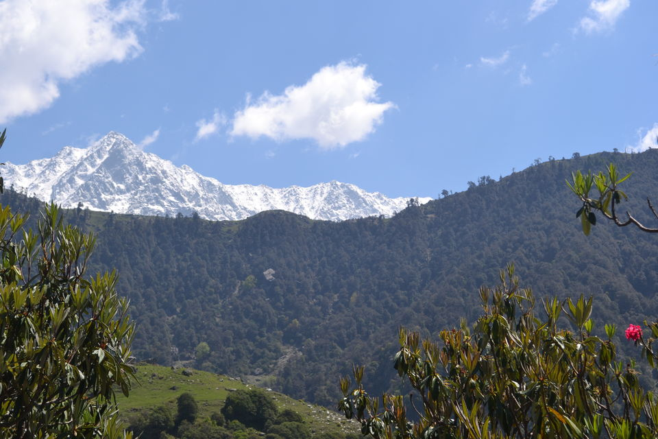 Photo of Triund Trek Trail, Trail to Triund Hill, Dharamshala, Himachal Pradesh, India by Saumiabee
