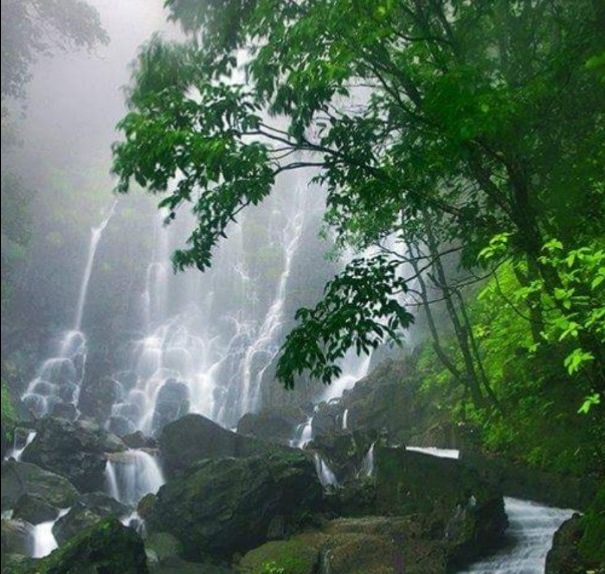 Photos of There is a Pleasure in the Pathless Woods, to find the gushing Waterfalls 1/1 by Karim S A