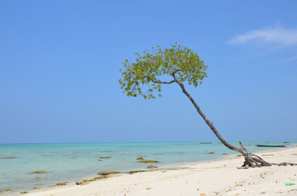 Photos of A Complete Guide to Andaman & Nicobar Islands 1/1 by Pragmatic Traveller