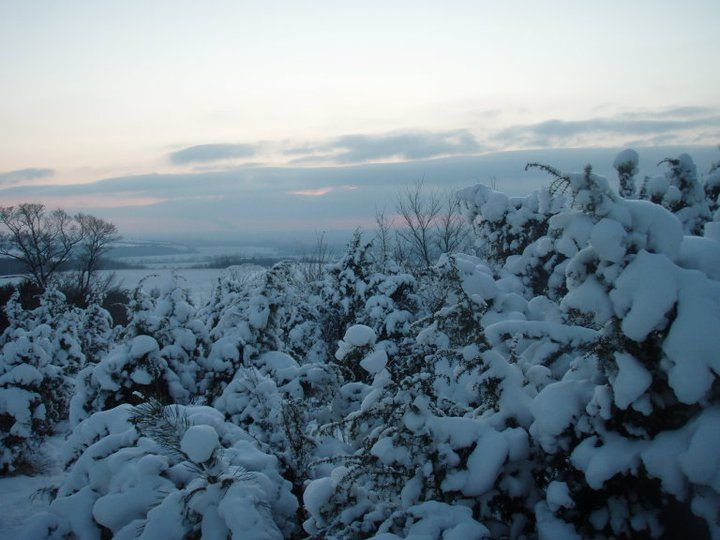 Photos of Slow Vacationing in Slovakia: Sauntering Through Varying Degrees of Snow 1/1 by Unshod Rover