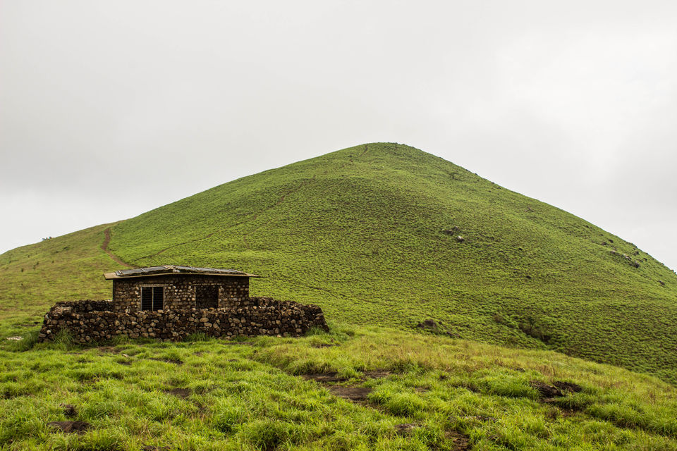Photos of Ranipuram -Trek the uncharted hills of the western ghats . 1/1 by TripMalabar Travels
