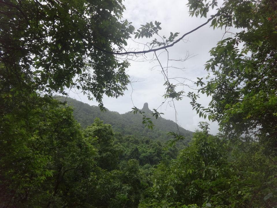 Photos of Karnala fort & bird sanctuaryJungle trek 1/1 by PANKAJ KUMAR