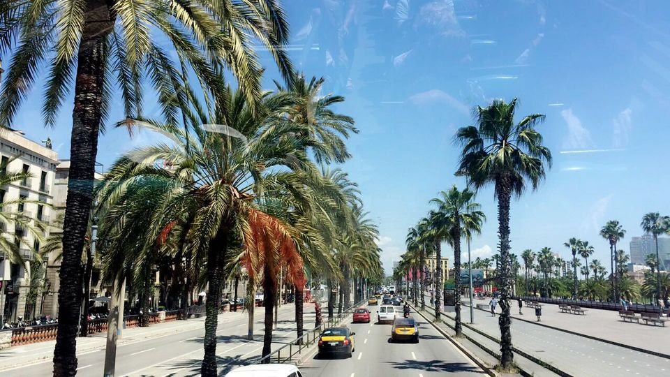 Photos of Barcelona 1/1 by Payal Shah