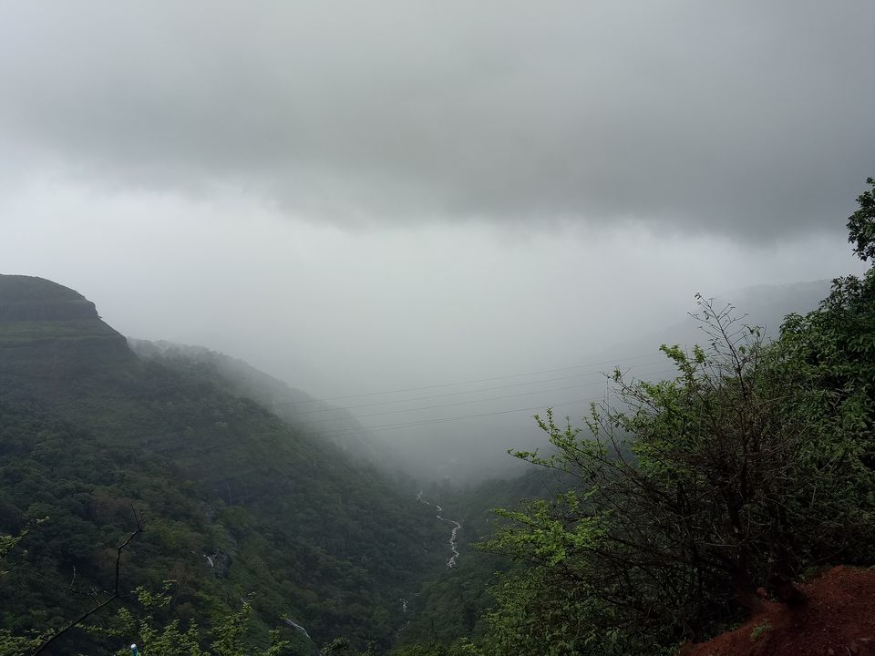 Photos of Mighty nature contrasts the gloom and the green 1/1 by Vaishnavi Prabhu