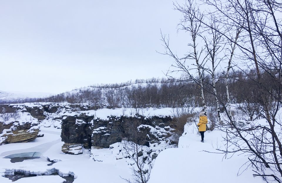 Photo of Abisko National Park, Sweden by Ananya Ghosh