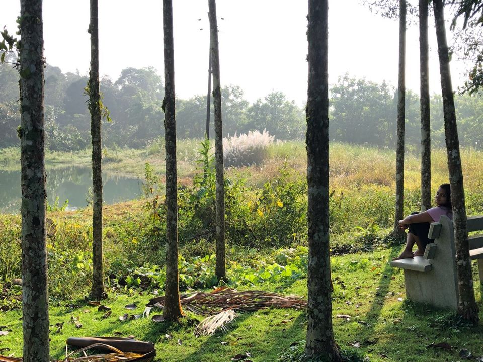 Photos of Long Weekend Diaries | Bangalore - Coorg - Kannur - Bangalore 1/1 by Addy's travelogue