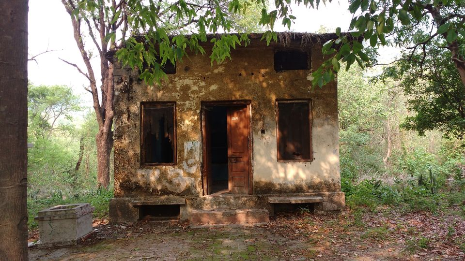 Photo of Beatles Ashram, Swarg Ashram, Rishikesh, Uttarakhand, India by theuncanny_traveller