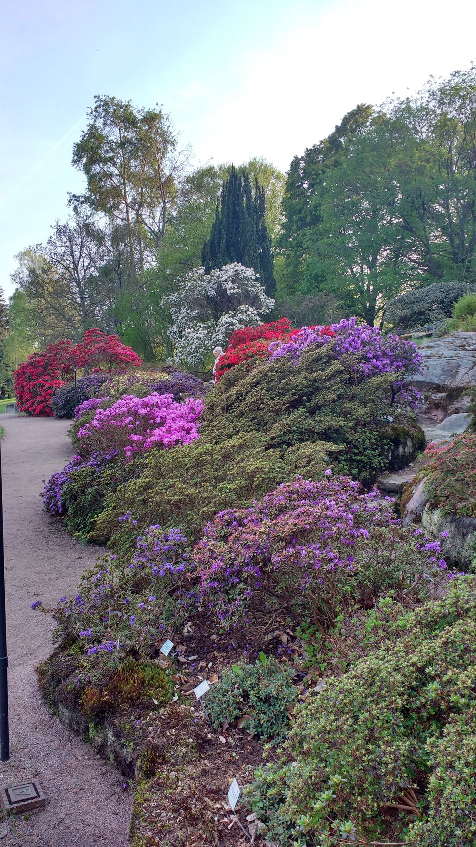 Photo of Göteborg Botaniska Trädgården, Gothenburg, Sweden by theuncanny_traveller