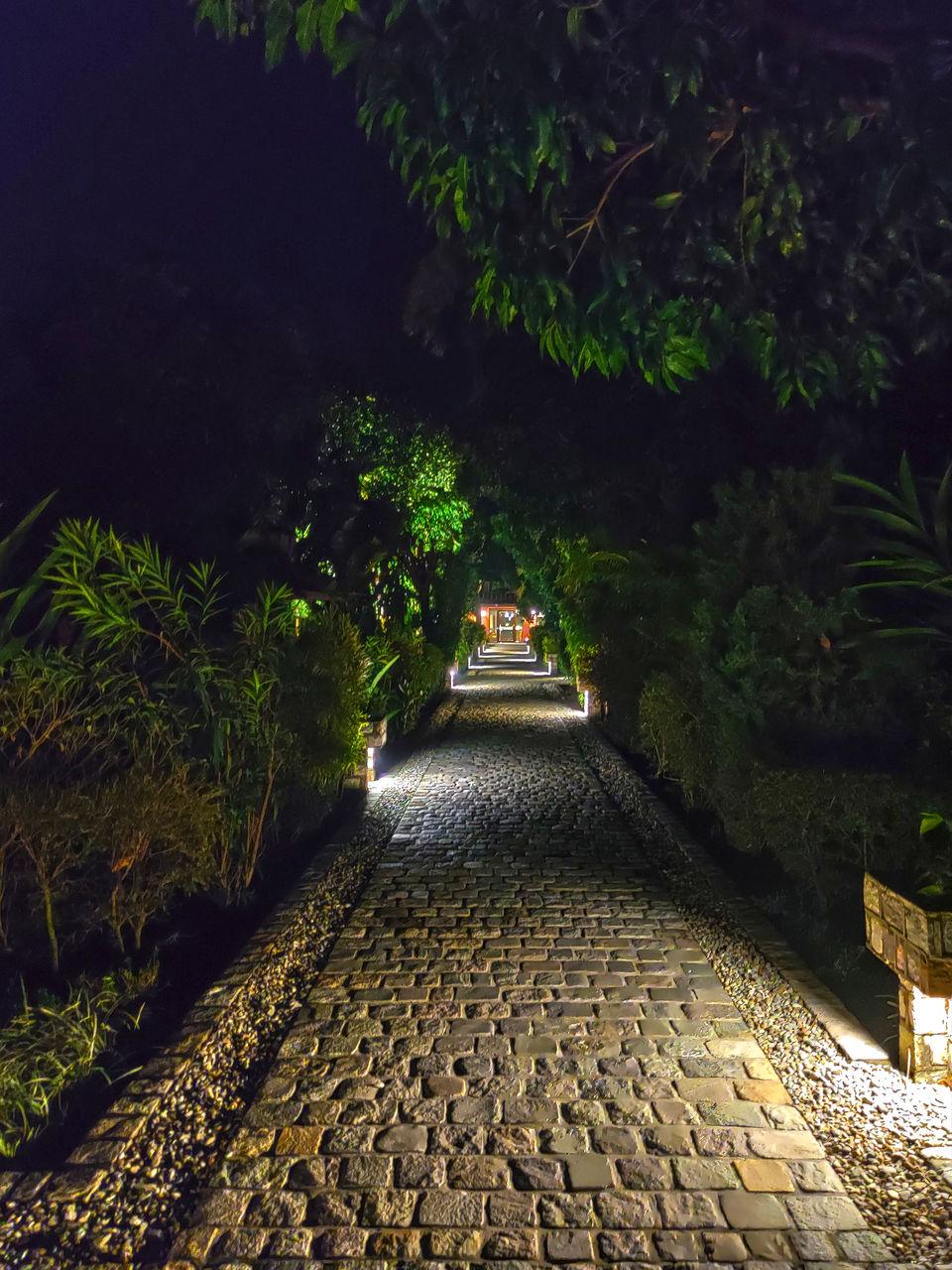 Photo of Taj Corbett Resort & Spa - Hospitality in Hallowed Woods by Mastane Musafir