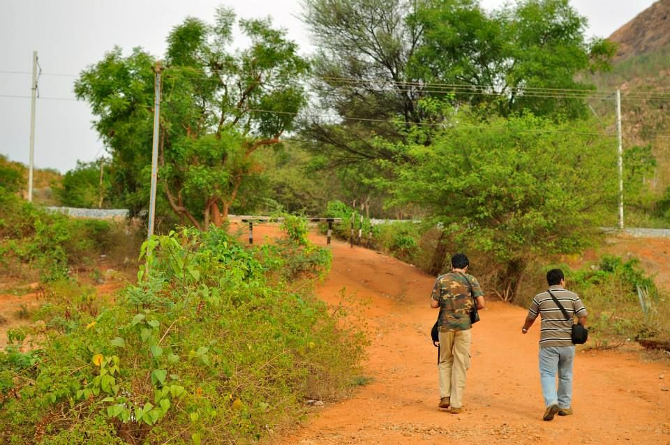 A Trek Up the Makalidurga, Karnataka