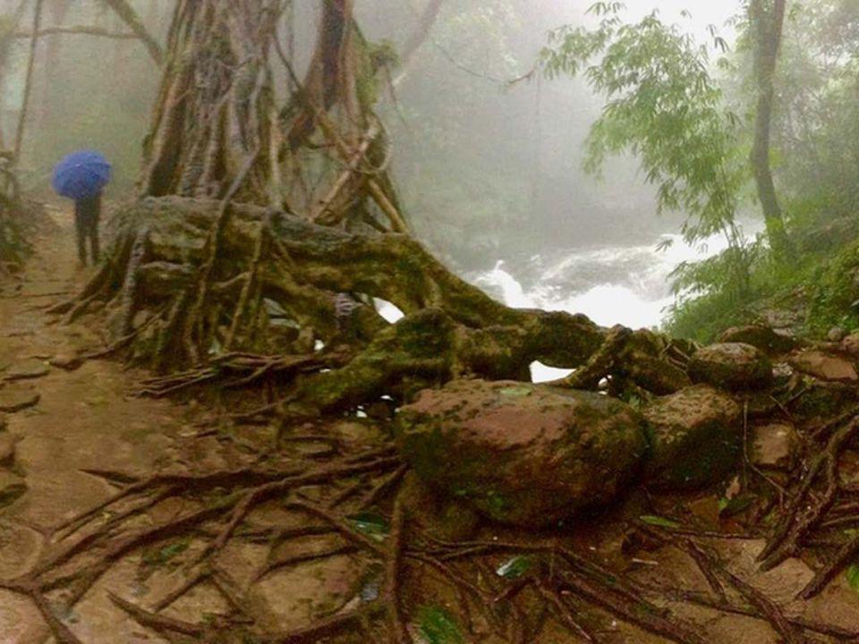 Photo of Mawlynnong, Meghalaya, India by Solo Backpacker