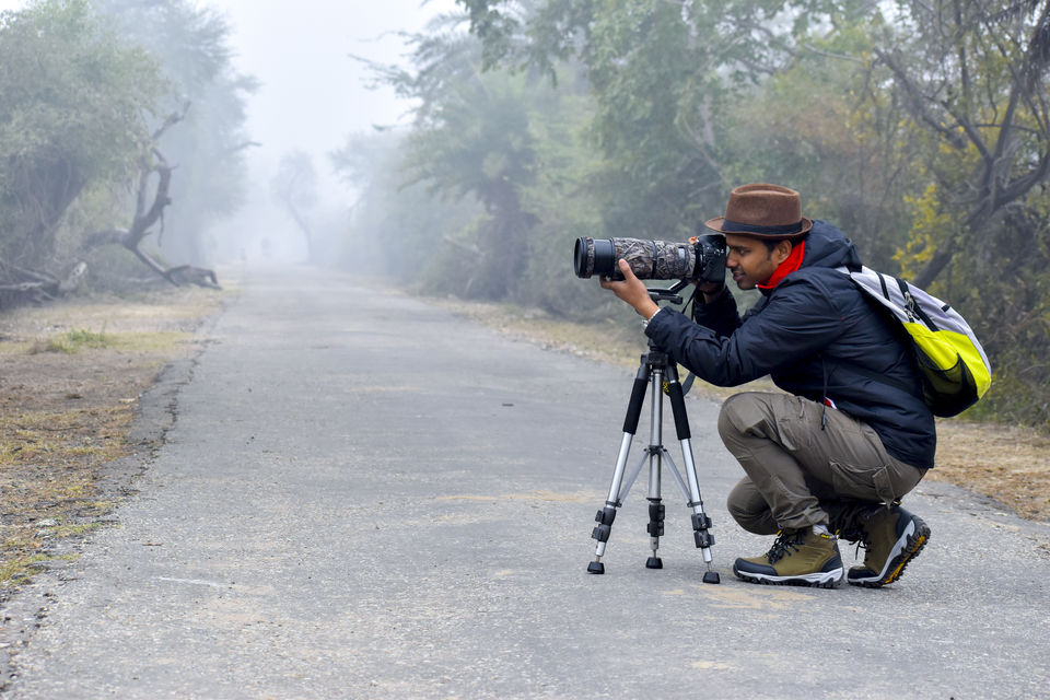 Photo of Photo tour: A Day trip to Bharatpur Bird Sanctuary 1/9 by Amir Hasan