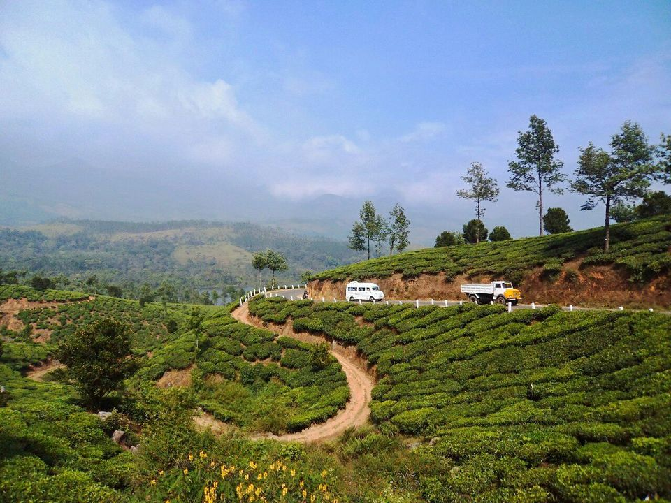 Photos of Have Only 48 Hours in Munnar? Here's A Complete Guide On What To See And Do 1/1 by Tania Banerjee