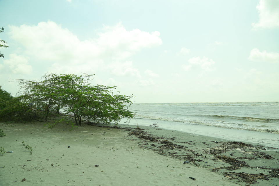 Photos of Bakkhali : The place unknown and roads unmeasured, unveiled beaches and beauty undefined. 1/1 by anila