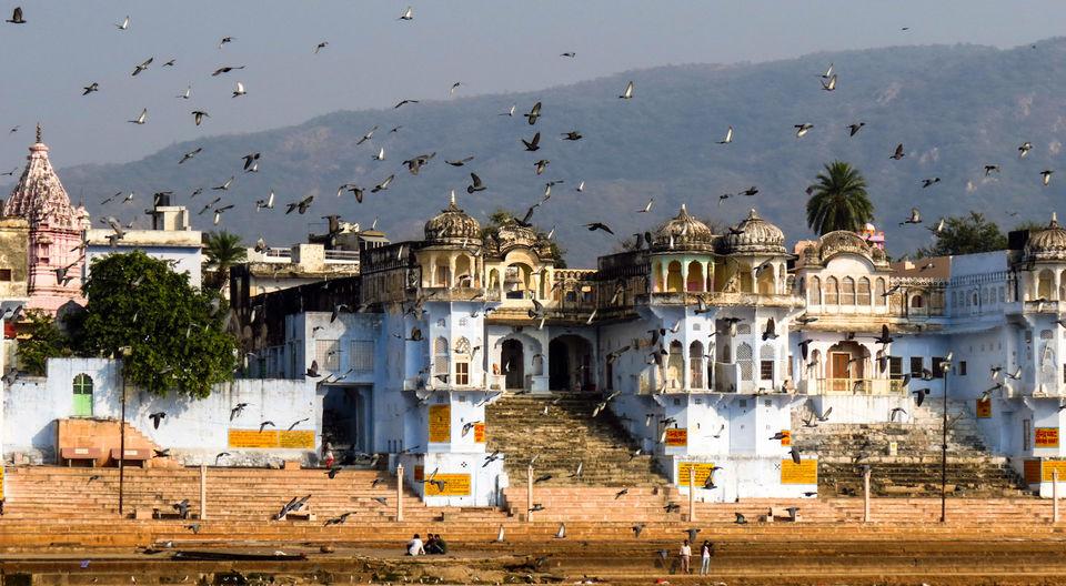 Photos of Pushkar-Of Faith, Festivity And Fervour  1/1 by Mridul Gogoi