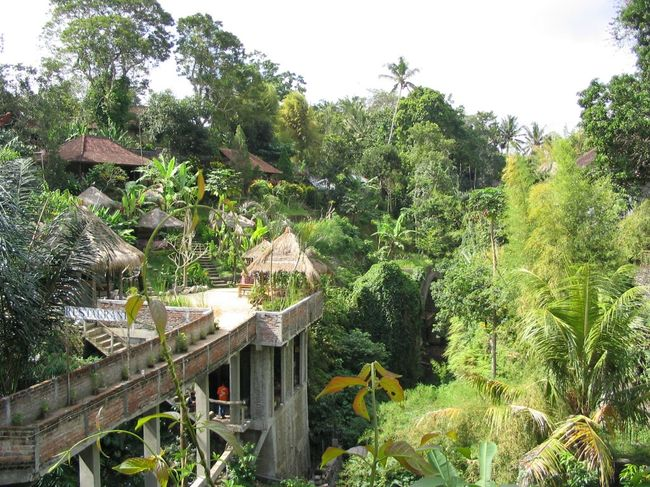To - Do - List for Bali